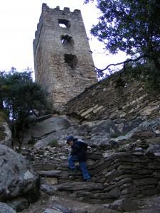Le petit Matis, au pied de la Tour Carrée bien débroussaillée
