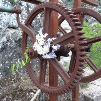 Tour Carrée de Colombières : la tyrolienne en fleur